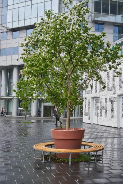 Кашпо со скамейкой у Ельцин центра